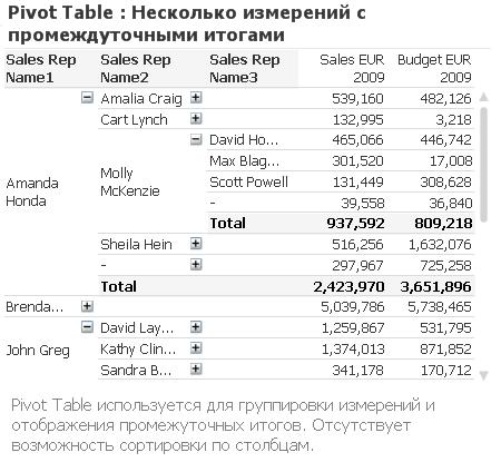 Pivot Table QlikView