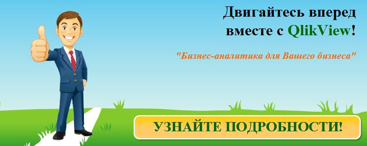 QlikView услуги